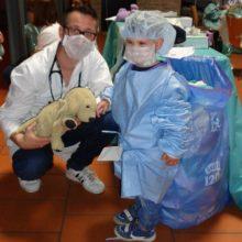 Arzt Teddybaer Kita Garching 1