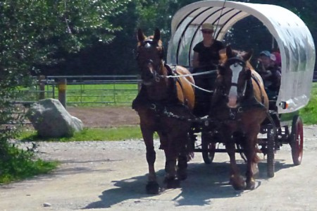 Garching uebrgang Ponyhof kutsche