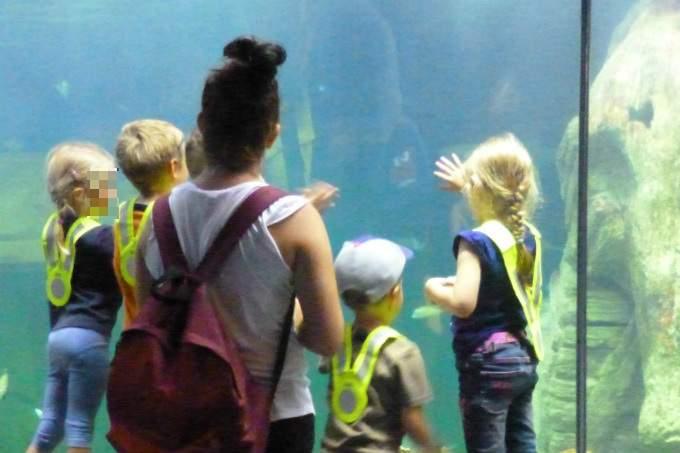 Kindergarten Garching Meer Sealife Aquarium