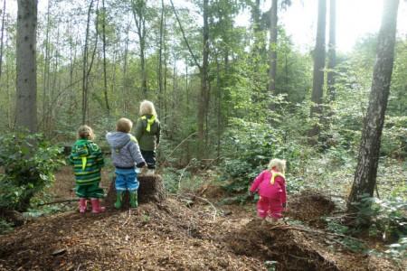 Kinderkrippe Fuerstenried Wald und Naturtag