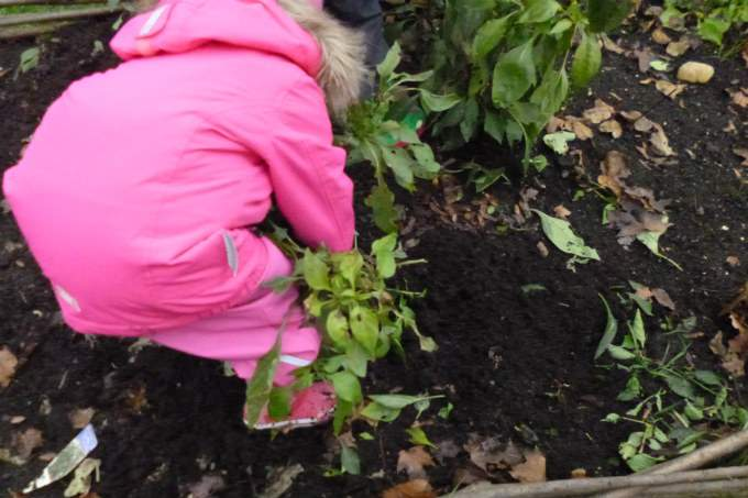 Kinderkrippe Kindergarten Garching Garten