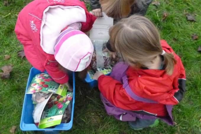 Kinderkrippe Kindergarten Garching Tulpen1