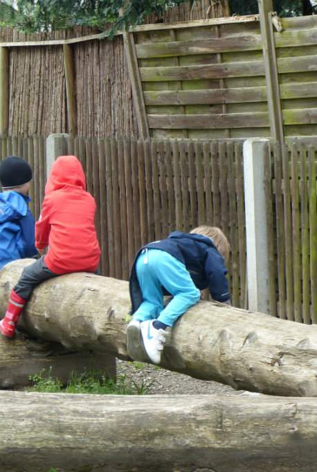Kita-Kind Klettern Baumstaemme Zutrauen
