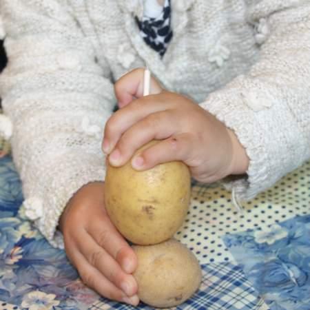Kita Laim kartoffelmaennchen