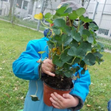 Kinderkrippe Trudering Gartenprojekt